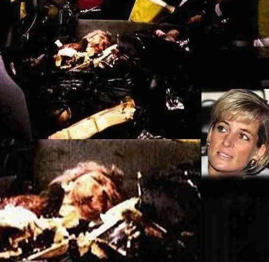 wish Princess Diana would die already